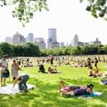 Termina El Verano Que Nunca Llegó A Nueva York